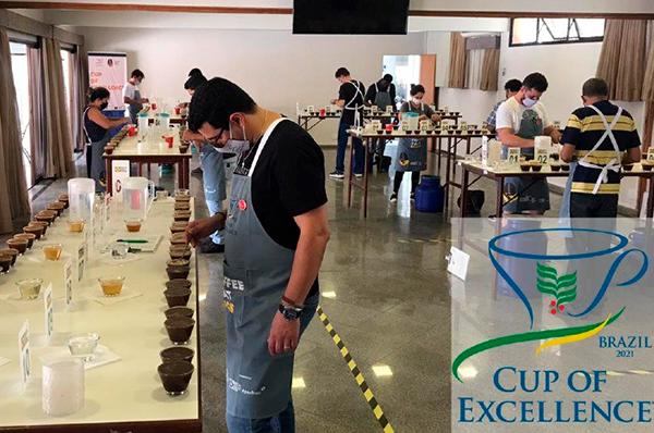 """CNC destaca grande número de produtores aprovados no """"Cup of excellence"""""""
